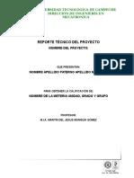 Guia Para El Desarrollo Del Proyecto IV Uni