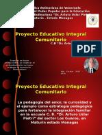 PEIC 2015-2016