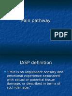 Pain Pathway 4