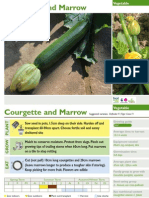 Courgette and Marrow