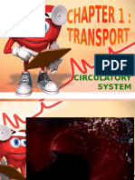 Sub 1.2 - Circulatory System_2009a