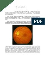 Aspectul Fundului de Ochi Normal