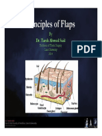 flaps.pdf