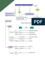 Mapa Conceptual Presocrc3a1ticos