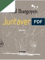 Juntaversos - Saul Ibargoyen