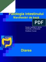 IntestSubt-15