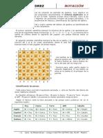 anotacionenelajedrez.pdf