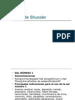 Sales Shussler