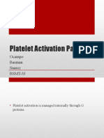 Platelet Activation Pathway