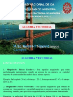 Algebra Vectorial 2015-I