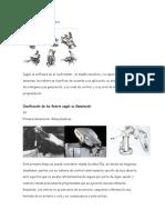 Clasificación de Los Robots