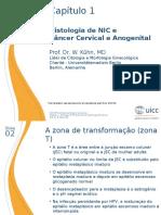 1 Histologia de NIC Pn