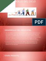 DESARROLLO DEL CICLO VITAL.pptx
