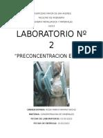 132162607-Lab-2-Preconcentracion-en-Jigs.docx