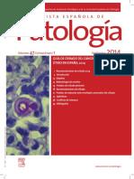 Patologia Guia Cancer Cervix