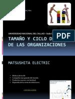 TAMAÑO Y CICLO DE LAS ORGANIZACIONES