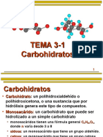 Carbohidratos - PPT.ppt