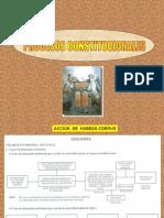 Procedimiento de Accion de Habeas Corpus.pps