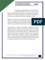 PIÑIN R2.pdf