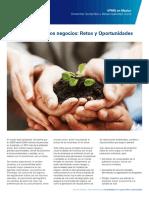 Factsheet Servicios Sustentabilidad (1)