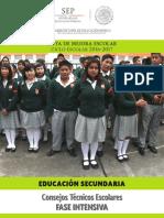 SecundariaFaseIntensivaCTEEP.pdf