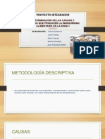 Grupo 5 Metodologia