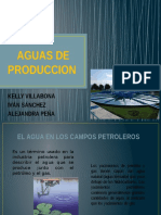 Aguas de Produccion