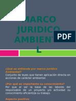 Marco Juridico Amb
