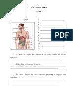 CIÊNCIAS - Teste - Sistemas Digestivos