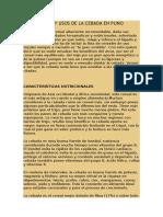 Propiedades Del Olluco en Arequipa