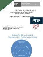 AUTOINSPECCIONES Y AUDITORIAS.ppt