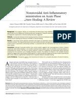 aines - consolidación osea (2).pdf