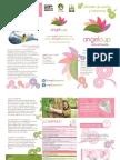 TripticoAngelcup.pdf