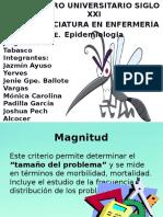 Chikungunya NUEVA