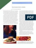 La célula 1.pdf