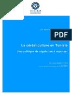 la céréaliculture en Tunisie