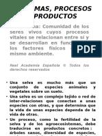 Sistemas Procesos y Productos