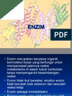 pertemuan 7 (enzim).ppt