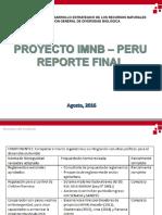 Final Report Imnb