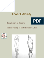 DMS2 - K1 - Lower Extremity.ppt