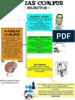 Mapas Mentais - Direito Processual Penal
