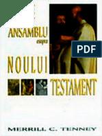 Privire de Ansamblu Asupra Noului Testament