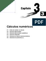 3. Calculos Numericos