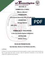 Biologia 2a INSTRUCTORÍA. Mitosis y Meiosis de Jose Antonio Rivera