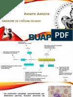 Caso Inmuno Clinica Sindrome Chediak-higashi Corregido