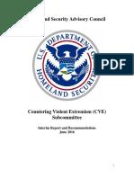 HSAC CVE Final Interim Report June 9 2016 508 compliant.pdf