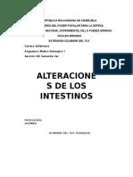 Alteraciones de Los Intestinos