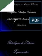 Funorte 1 - Patologias Do Sistema Tegumentar