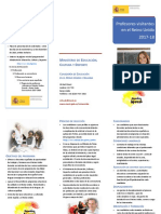folleto_ppvvUK_2017