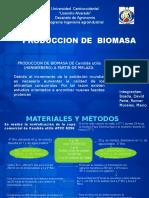 Presentacion de Produccion de Biomasa (2)